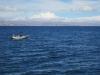 Jezero Titica: Tradiční způsob přepravy