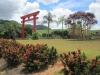 Japonská zahrada ve státě Espirito Santo