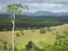 Vnitrozemí státu Bahia