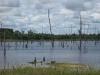 Indiánská rezervace nedaleko města Manaus