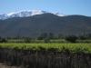 Vinice a zasněžené vrcholky za Santiagem