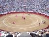 Ekvádor je možná poslední zemí, kde se proti býčím zápasům neprotestuje