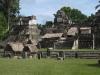 Tikal: Acropolis del Norte