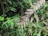 Cahuita - národní park