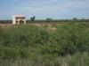 Region Chaco: Osamělá farma