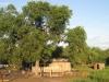 Chaco: Dům chudších lidí