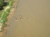 Asunción: Děti koupající se v řece Paraguay