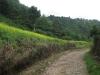 El Pital: Cesta na vrchol