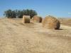 Typická venkovská krajina