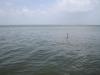 Jezero Maracaibo - největší jezero v Jižní Americe